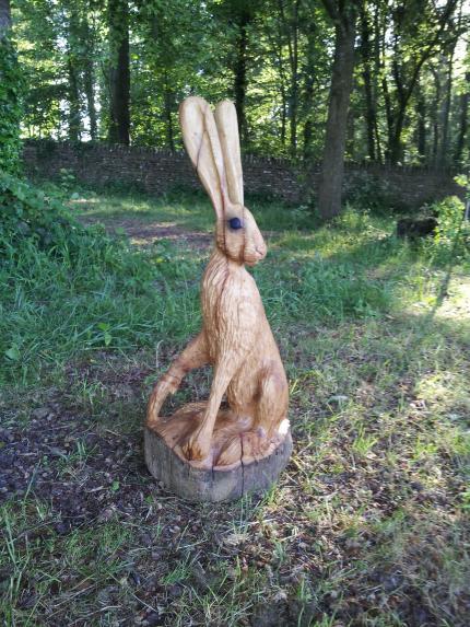 Alert Hare, Oak.