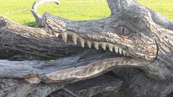 Crocotree, Walnut, Stroud.