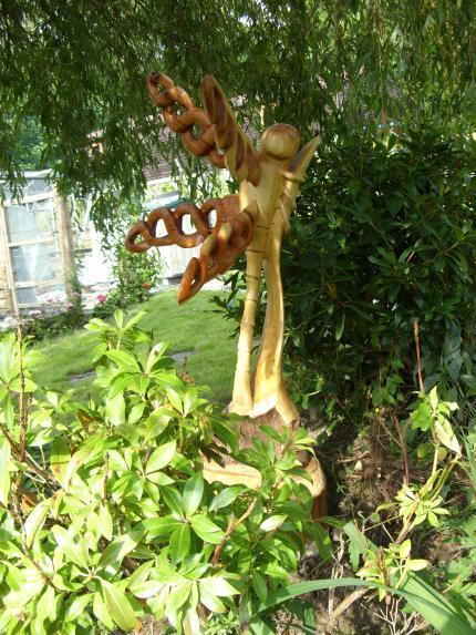 Dragonfly, Lawson Cypress and Wetern Red Cedar.