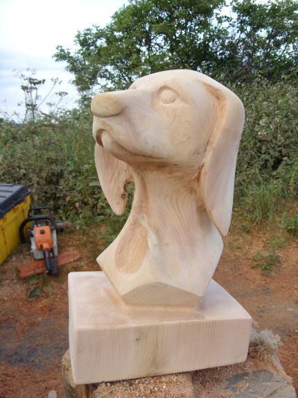 Hungarian Visler bust, Western Red Cedar.