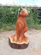 Hare, Western Red Cedar.
