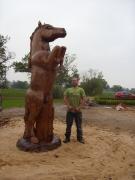 Rearing horse, Oak, Harts Farm Stud, Red Marley.